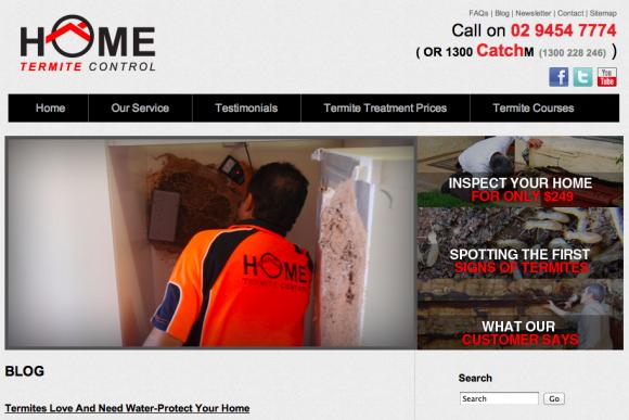 Home Termite Control Blog