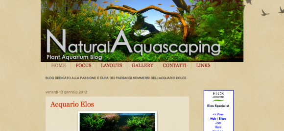 Natural Aquascaping - Planted Aquarium Blog