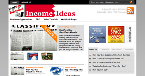 Online Income Ideas