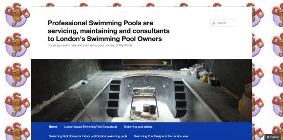 Professional Swimming Pools