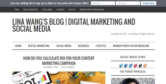 LINA WANG's Blog | Digital Marketing and Social Media