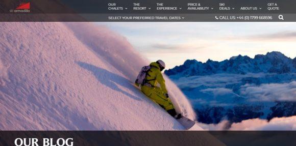 Ski Armadillo
